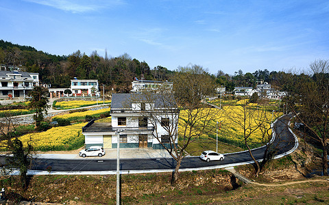 春漫城乡图片