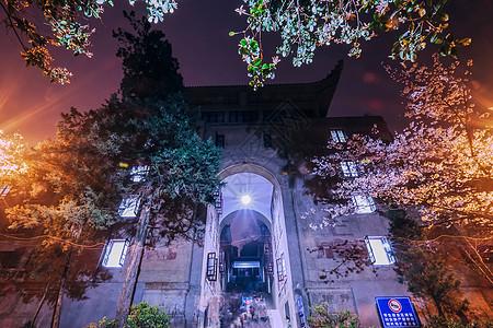 武汉大学夜樱樱花图片