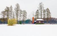 雪后美景图片