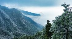 江西庐山景区雾凇美图图片