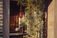 门里的小院图片