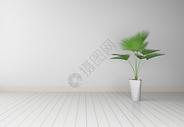 室内盆栽效果图片