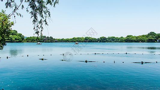 春天的西湖图片