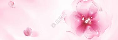 花瓣唯美背景图片