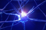 医疗神经细胞图片