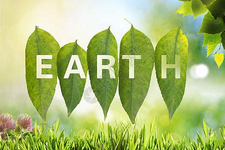 树叶和地球日图片