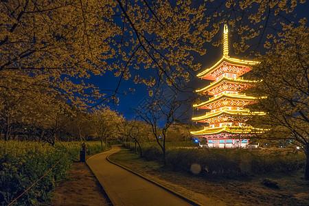 武汉东湖樱园夜樱图片