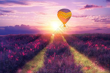 花海热气球背景图片