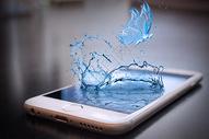 手机里飞出的水蝴蝶图片