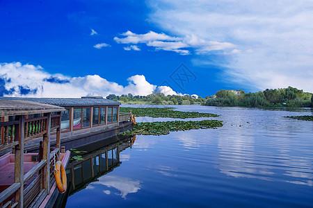 湿地公园一角图片
