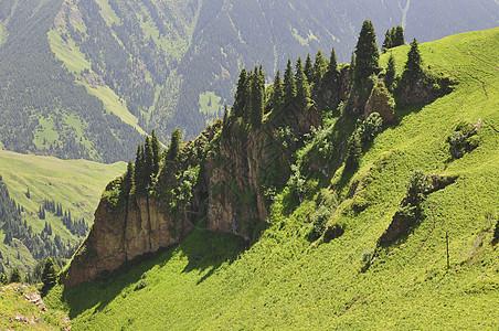 新疆天山山脉草地森林图片