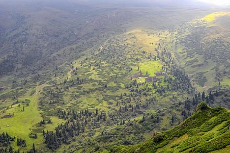 新疆天山山脉山野草地图片