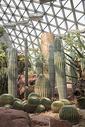 温室植物园图片