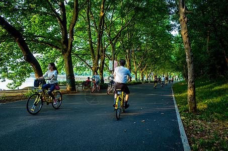 武汉东湖绿道美景图片
