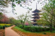 武汉东湖樱园日式塔图片
