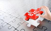 B2C拼图图片