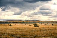 贝加尔湖边的秋色图片