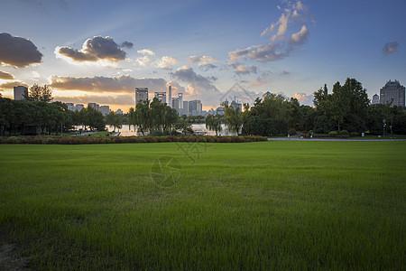 上海公园风景图片
