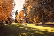 新西兰基督城风光图片