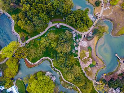 太子湾春天图片