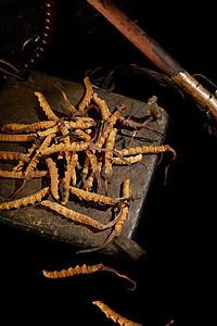 冬虫夏草虫草保健食品图片
