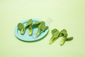 摆放的小青菜图片
