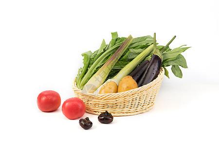 篮子里的蔬菜图片