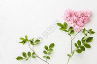 桌面上的春日樱花平铺造型图片