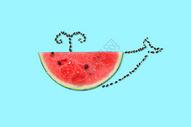 创意鲸鱼西瓜图片