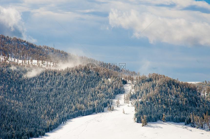 新疆禾木冬季白桦林雪山美景图片