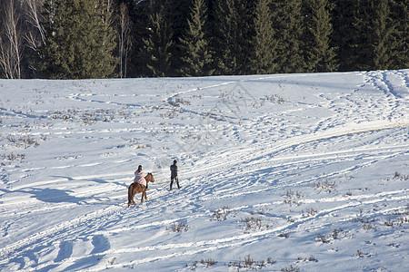 新疆禾木雪景游玩图片