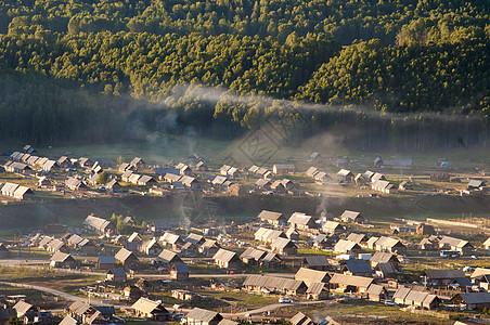 新疆禾木木屋白桦林图片