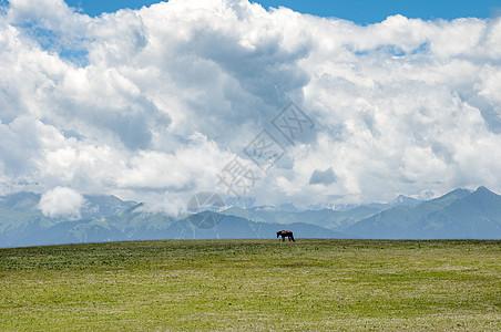 新疆天山牧场美景图片