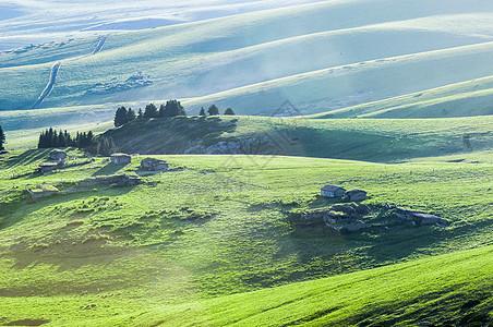新疆天山牧场图片