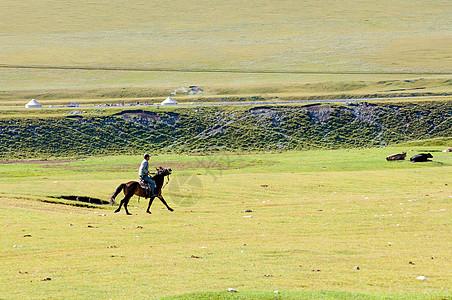 新疆天山草原牧业风光图片