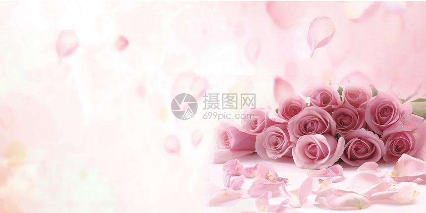 玫瑰花背景图图片