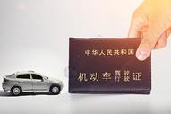 机动车驾照证图片