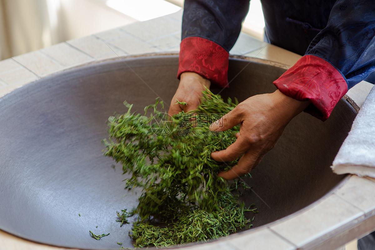 老白茶是什么茶品种