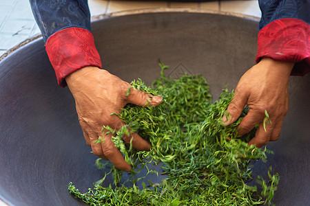 新鲜绿茶制茶炒茶过程图片