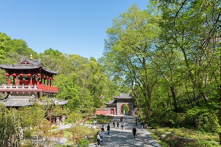 安徽滁州琅琊山风光高清图片