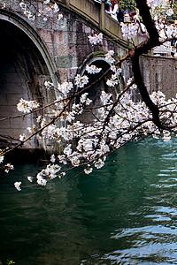 春拍杭州太子湾公园图片