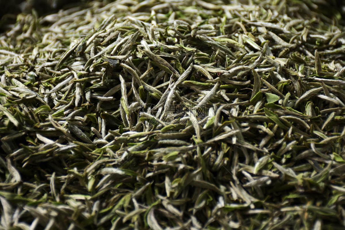 龙井和安吉白茶