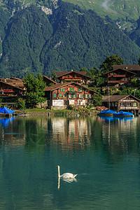 瑞士因特拉肯湖风光图片