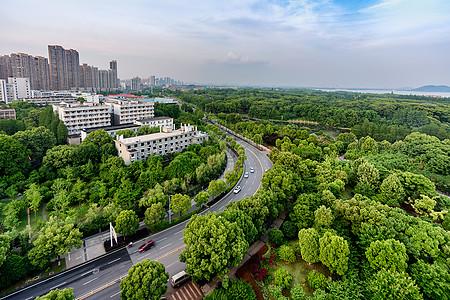 城市绿肺图片