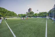 足球场图片