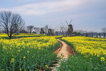 美丽的乡间小路图片