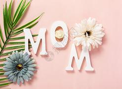 母亲节摄影图集