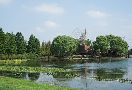 上海辰山植物园一角图片