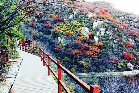 北京房山区坡峰岭景区下午深秋红叶远山景色图片