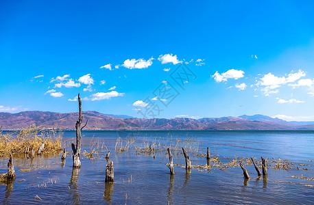 云南大理海舌生态公园图片